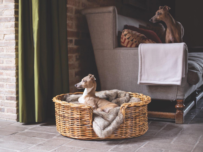 Charley Chau Oval Rattan Dog Baskets Natural